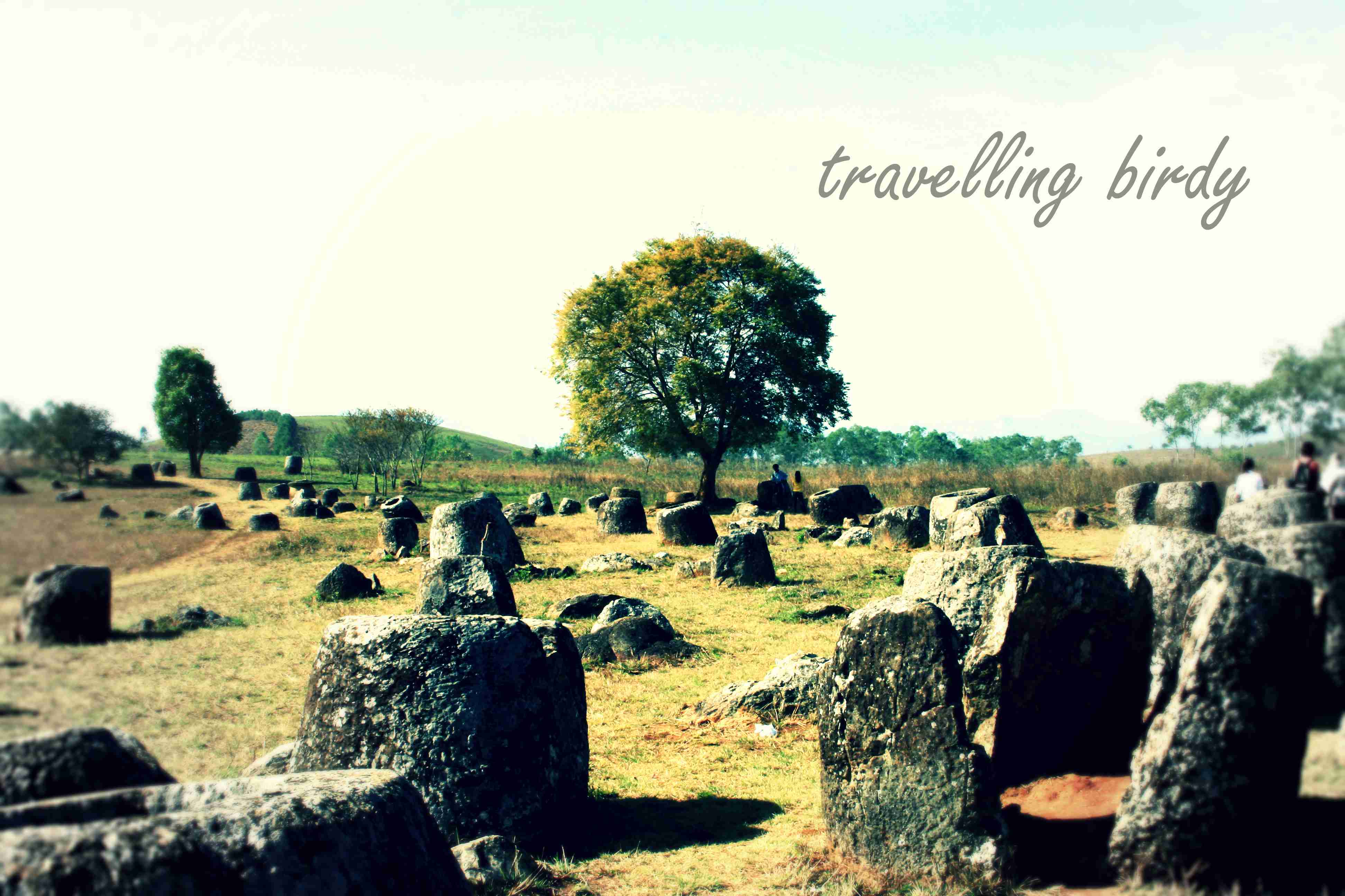 The plaintive sight that greets you at the Plain of Jars
